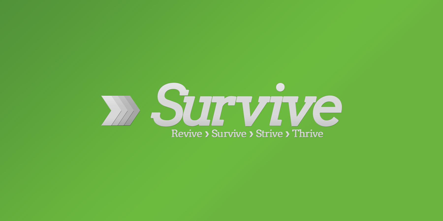 survive budget